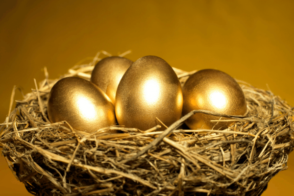 8 Tips to Protect Your Nest Egg