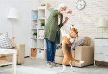 older pets active