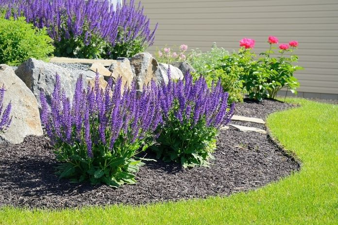 The Most Common Landscaping Mistakes To Avoid This Summer